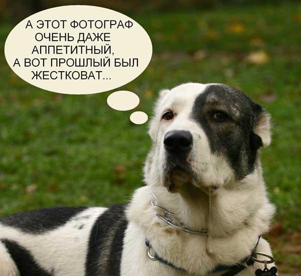http://aziatclub.narod.ru/400.files/Nusja_fotograf.jpg